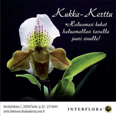 Kukka-Kerttu