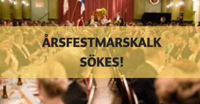 årsfestmarskalk 101 banner årsfest