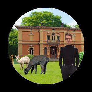 Observationsbild: Styrelsemedlem Axel med alpackor på Humanisticums gård.